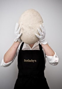 An intact and complete Elephant Bird Egg, Madagascar, 17th-century or earlier. Copyright Sotheby's.