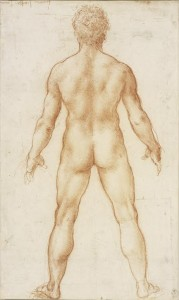 Leonardo da Vinci (1452–1519) A male nude c.1504-5 Red chalk Royal Collection Trust / © Her Majesty Queen Elizabeth II 2016