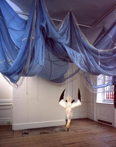 Dorothy Cross, Parachute, 2005, Dimensions variable, Parachute and gannet, Collection IMMA, Purchase 2005